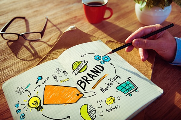 LBL Ellen | Creating A Brand